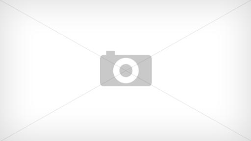 Patinoar Remetea (în lucru)